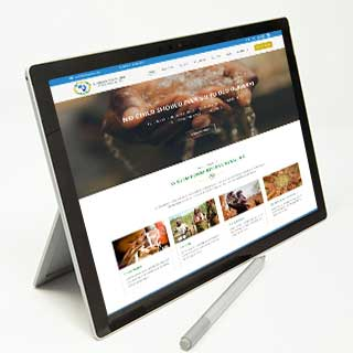 web design and development service for New Desk