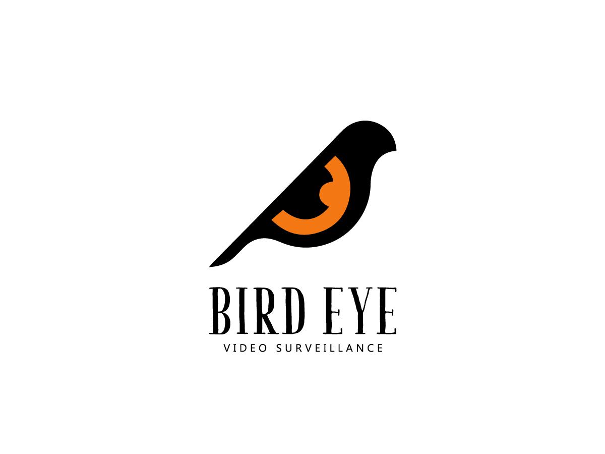 logo design service for Bird Eye