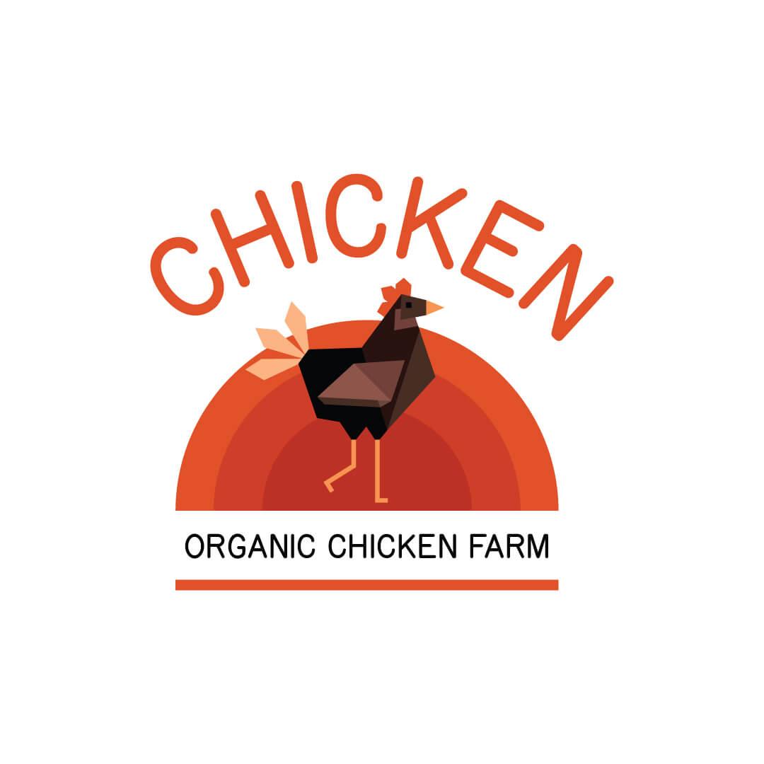website design service for chicken